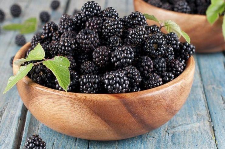 Шелковица - отличный ингредиент для ратафии из ягод