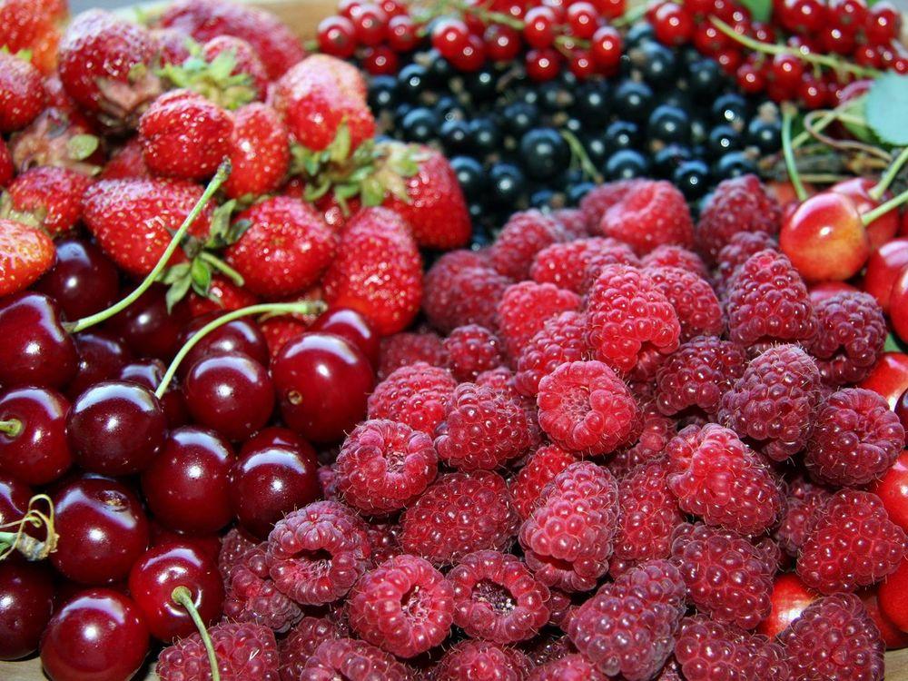 Вишня смородина и малина для ягодной ратафии